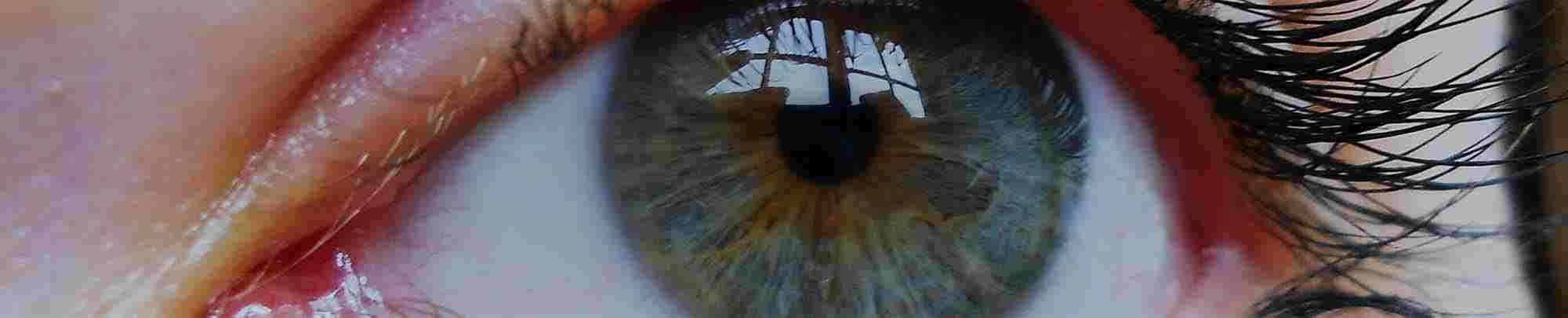 Närbild på en kvinnas blå ögon